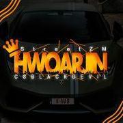 HwoarJin347