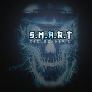 s.M.A.R.T