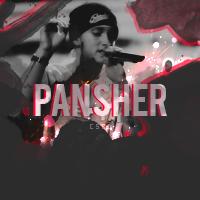 Pansher-™