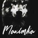 MaxX*